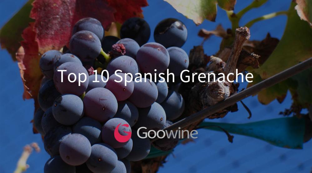 Goowine: 西班牙最佳的10款歌海娜葡萄酒